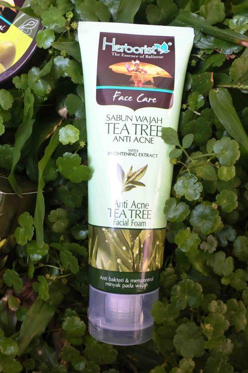 Herborist Tea Tree Anti Acne Facial Foam – First Impression
