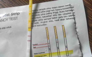 My Pregnancy Diary II - Masuk Two Stripes Club Lagi!