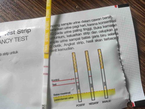 My Pregnancy Diary II - Masuk Two Stripes Club Lagi!