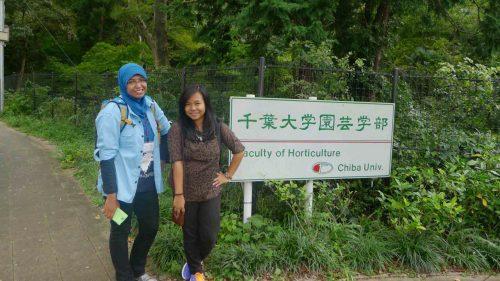 Pengalaman Menjadi Mahasiswa di Universitas Jepang