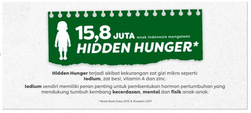 hidden hunger di indonesia