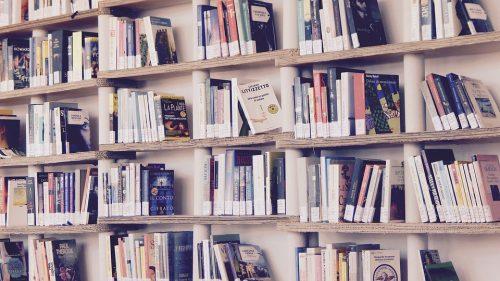 Tips Menggunakan Jastip BBW (Big Bad Wolf) Book Sale
